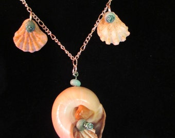 Chain Necklace with Moon Snail and Kitten's Paw Shells