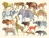 Animal Watercolor Illustration Print - Educational Muted Labeled Hand Painted Zoo Animals