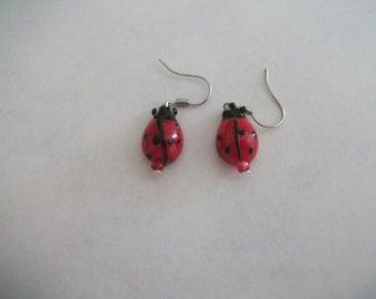 Lampwork ladybird earrings
