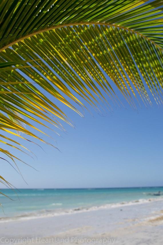 Large Print Ocean, Palm Tree Photo, Beach Decor, Ocean Photography, Large Fine Art, Blue and Green, Big Landscape, Oversized Wall Art