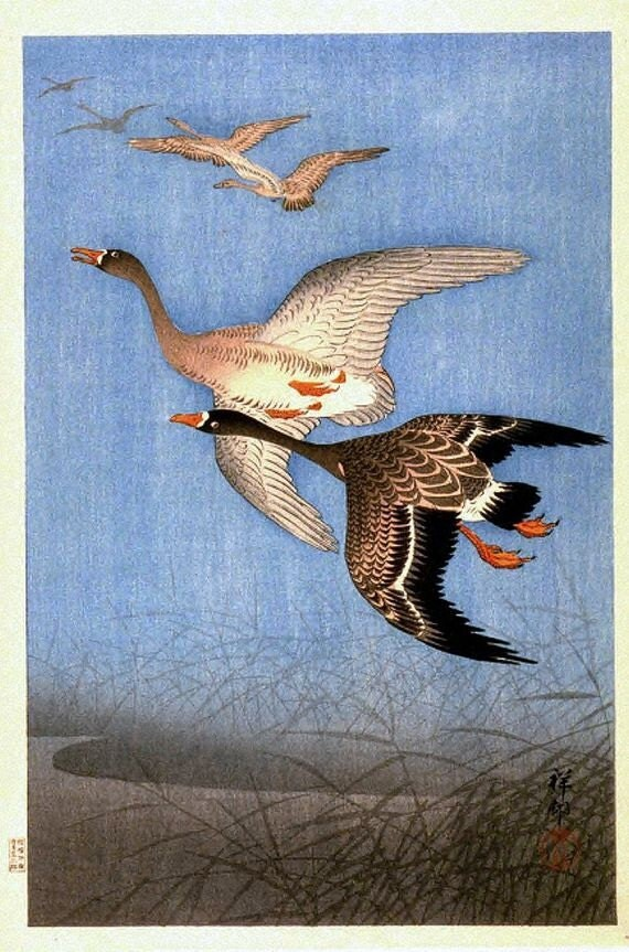 an analysis of wild geese by martha ostenso