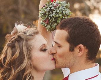 SALE Frosted Mistletoe Kissing Ball