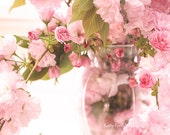 Pink Cherry Blossoms, Shabby Chic Decor, Pink Flower Photography, Pink Spring Cherry Blossoms Print, Romantic Pink Floral Shabby Chic Photo