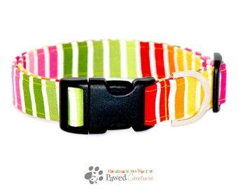 Tutti Cutie - UK Handmade, Bright, Stripe Print Fabric Adjustable Dog Collar