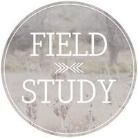 shopFieldStudy