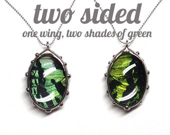 Oval Sunset Moth Bubble Necklace - Real Butterfly Wing Jewlery - Two Sided, Two Shades of Green