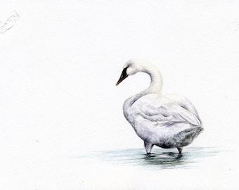 Serenity - Original 5 x 7 Watercolour Painting