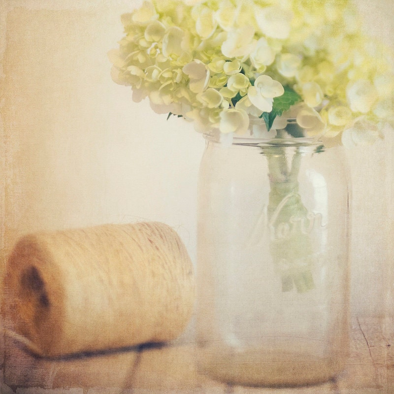 Fine Art Photography Green Hydrangea Galllery32 etsy