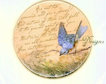 Bluebird Inspirational Bible Scripture Eye on Sparrow Matt 10 of Hope Purse Mirror Bird 3.5in