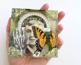butterfly charmer - acrylic art block