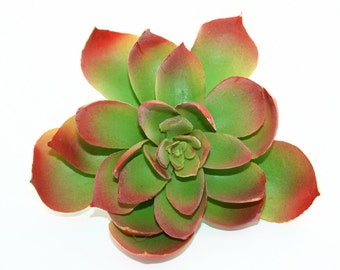 Fake Succulents - Artificial Succulent in Red and Green - artificial succulents - ITEM 0322