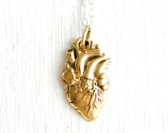 Anatomically Correct Heart necklace - sterling silver or bronze heart jewelry - anatomical human heart necklace - realistic heart necklace