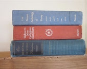 Book Stack - Large Reference Books in Blue and Red - Dictionary