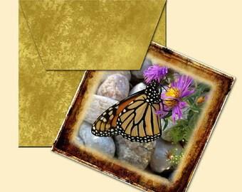 MONaRCH BuTTERFLIES-Photo Art 4x4 Tiles//Cards W/Primitive Envelope Template-Printable Collage Sheet JPG Digital File