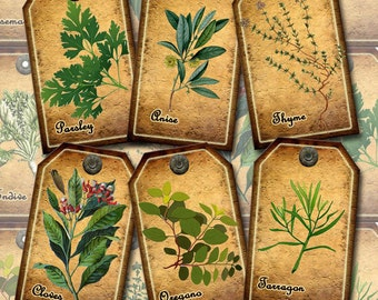 HERBS, SPiCES -PRiMiTiVe Vintage Art-Hang/Gift TAgs/Cards- craft projects- INSTaNT DOWNLoAD- Printable Collage Sheet JPG Digital File