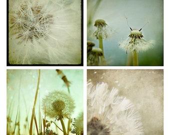 Dandelion Photography Set - aqua, blue, nursery wall art, dreamy, nature photography, photo set