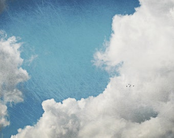 "Cloud photography print | blue sky and clouds | nature wall art | bird photography | nursery room decor ""Birds in a Big Sky"""