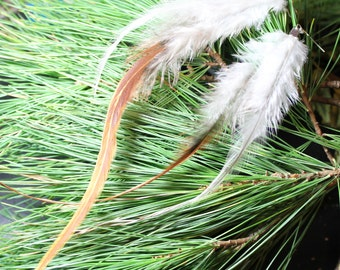 Natural Neutral Brown And Blue Grey Feather Earrings