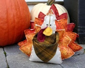Winston the Little Turkey Handmade Thanksgiving Decoration Centerpiece