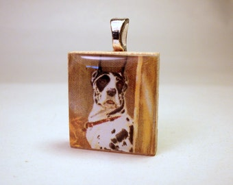 GREAT DANE - Harlequin SCRABBLE Pendant / Charm / Dog Lover Gift / with Satin Cord