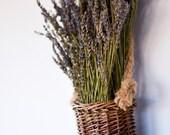 Hanging Dried Lavender Basket, Mothers's Day gift, dried lavender arrangement, dried lavender wreath, lavender basket