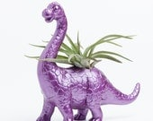 Dinosaur Planter with Air Plant Room Decor, College Dorm Ornament, Plants and Edibles, Metallic Purple