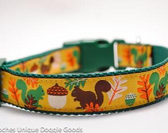 Frisky Squirrels in Gold - Custom Dog Collar