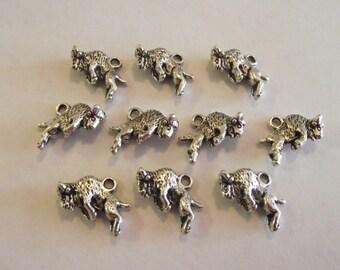 Buffalo charms- ten charms- silver