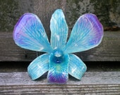 Free Shipping REAL Natural Shades of Blue and Magenta Purple ORCHID Pin and Pendant