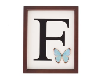 Baby Nursery Decor Monogramed Letter with real framed butterfly customized