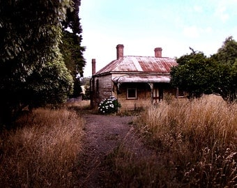 The Old Cottage - 8X10 photographic print - Australian landscape - Abandoned house - hertiage architecture