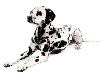 Dalmatian original watercolour painting