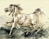 Pony - Original Watercolor Painting, Wild Horse, Animal OOAK watercolor on cream paper, original drawing, one of a kind