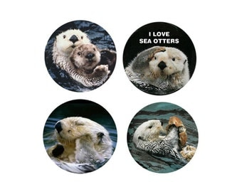 Sea Otter  Magnets:  4 Sassy Sea Otters for your home, your collection,  or to give as a unique gift
