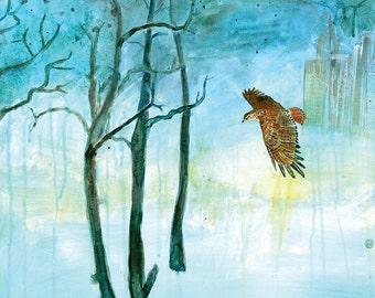 Gratitude - Red Tailed Hawk - Fine Art Print