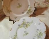 Gorgeous - Limoges- Porcelain Lucheon Plates- Dessert Plates -Spring Flowers Pattern - Ornate -Set of 6