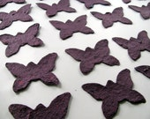 Plum Seed Paper - Butterfly Wedding Favor - Plantable Seed Paper Butterfly Wedding Decorations