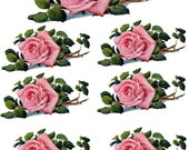 Instant Digital Download Vintage Pink Roses Flowers Transparent PNG Clip Art  - Instructions to make Waterslide Decals Bonus! ECS