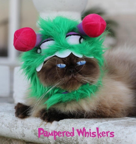 Monster Costume - Little Monster hat for dogs and cats