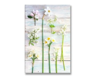 White Botanical Photo on Canvas, White Flowers Fine Art Gallery Wrapped Canvas, Spring Flowers, Large Wall Art, French Home Decor