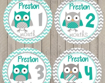 FREE GIFT, PERSONALIZED Baby Boy Owl Monthly Baby Month Stickers Teal Blue Gray Chevron Bodysuit Gift Baby Newborn Milestone