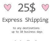 EMS- expedited shipping to any destenation