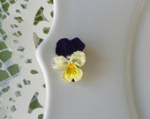 Tiny Flowers, Violas, Dry Flowers, Daisy, Fairy, Rosebuds, Flowers, Jewelry Making, Real Flowers, Miniature, Jewelry, Pansy, Craft Supply