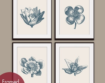 Botanical Flower Bud Prints (Series A) Set of 4 - Art Prints (Featured in Denim Blue with a soft French Grey)