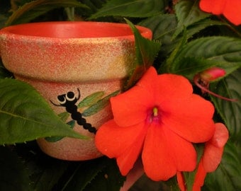 Dragonfly Design - Painted Flower Pots - Party Favor Pots - Small Flower Pots - Kids Party Favors