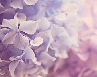 floral photography, purple wall art, hydrangea print, floral bathroom wall art, flower photography, purple floral nursery, floral baby room