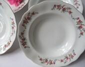 Vintage Soup Bowls Favolina Spring Garden Floral Set of Four