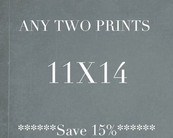 Two 11x14 Photographs, Save 15%