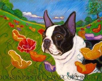 Boston Terrier painting art dog poppies ORIGINAL oil pastel Dog art animal pet portrait poppy landscape