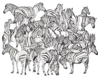 Zebras // A4 print